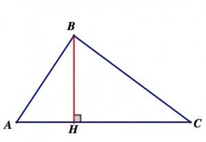 высота, определение высоты, свойства высоты треугольника